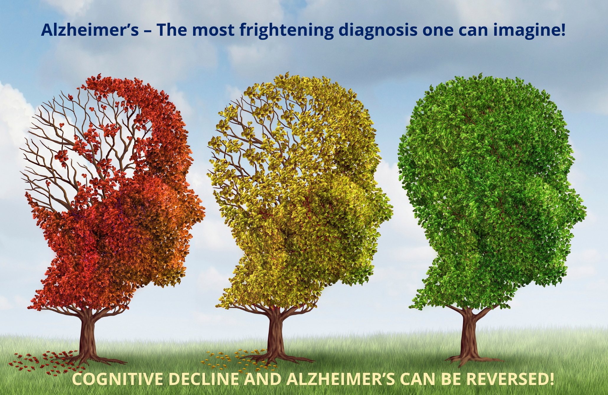 Alzheimers remediation